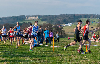 Runners at xcountry Harewood House
