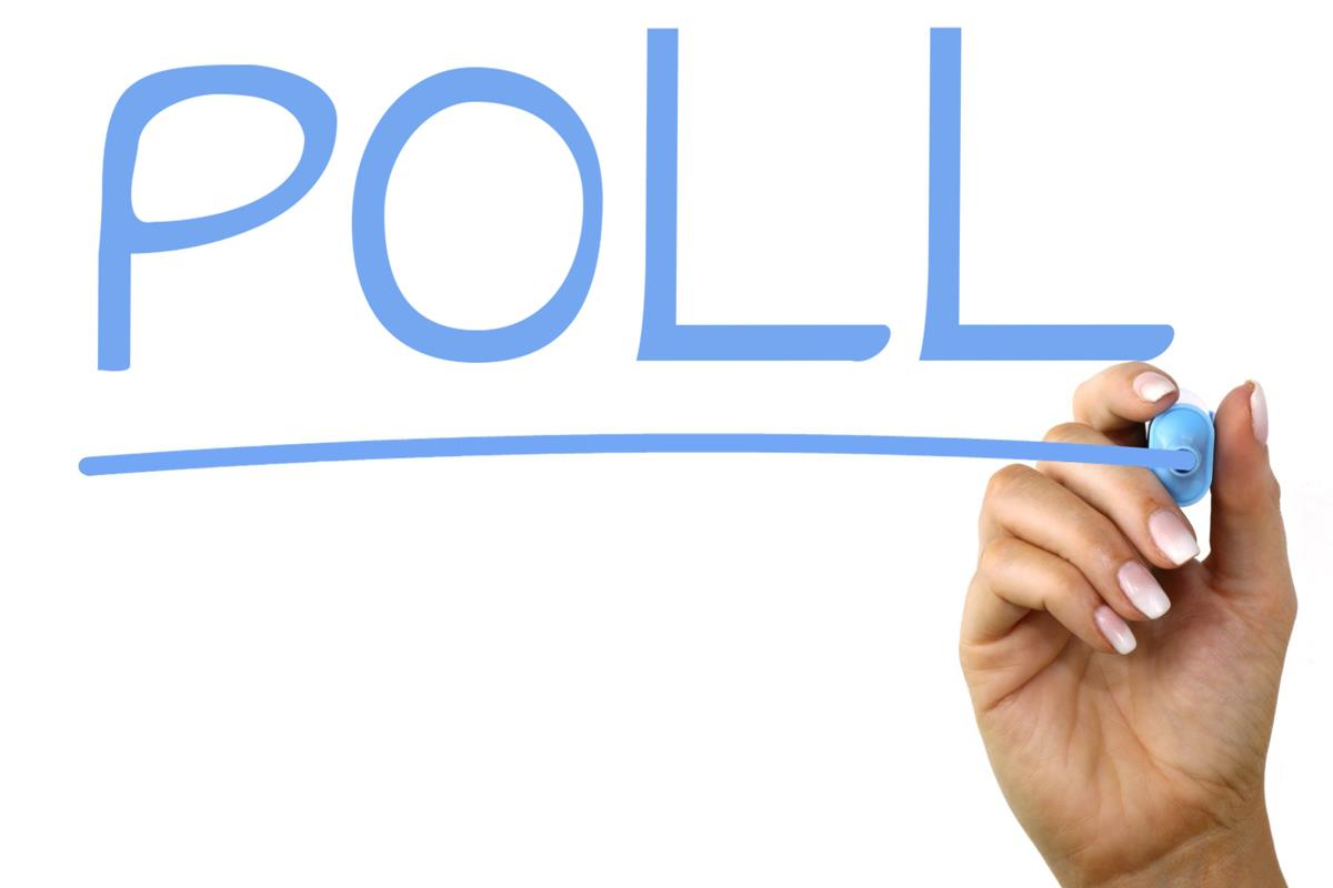 Image of the word poll